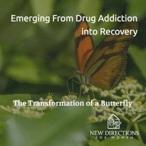 The Transformation of a Butterfly